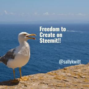 Freedom Steemit