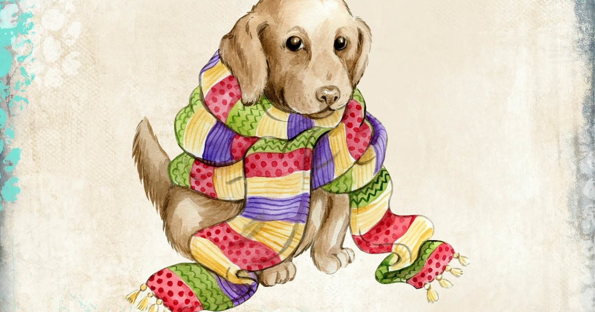 Dog,                Clothes,                Like,                Mammal,                Breed,                Puppy,                Carnivoran,                Backgrounds,                Photography,                Background,                Photo,                White,                 Free Image