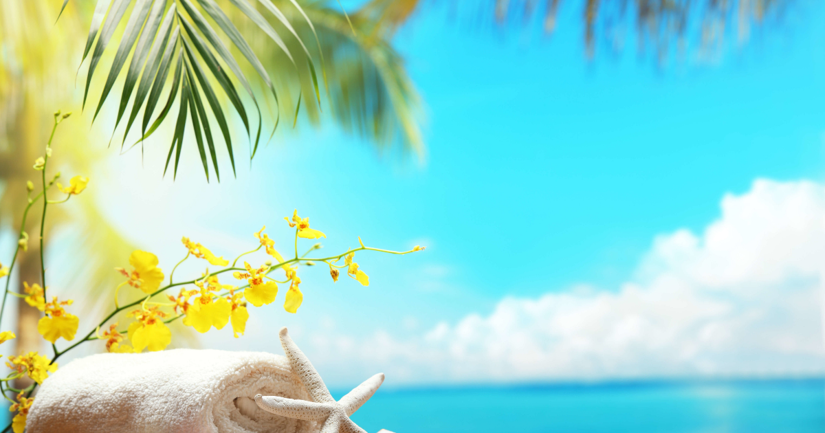 Sky,                Water,                Caribbean,                Daytime,                Leaf,                Tropics,                Summer,                Sea,                Sunlight,                Vacation,                Backgrounds,                Photography,                Background,                 Free Image