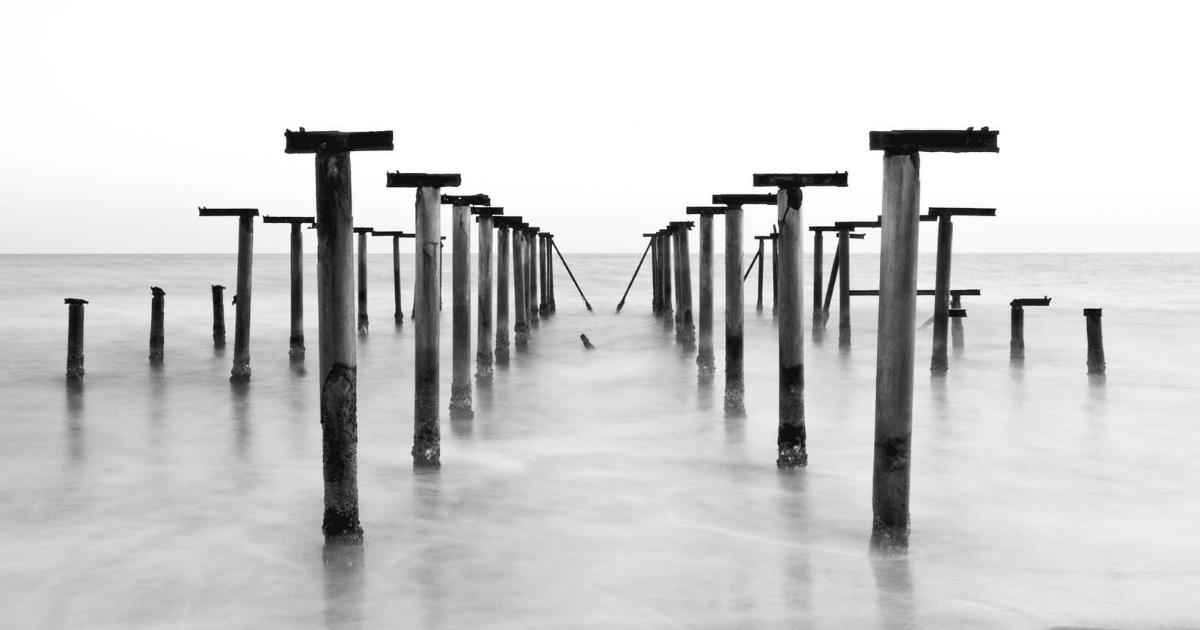 Black,                And,                White,                Monochrome,                Photography,                Backgrounds,                Background,                Photo,                 Free Image