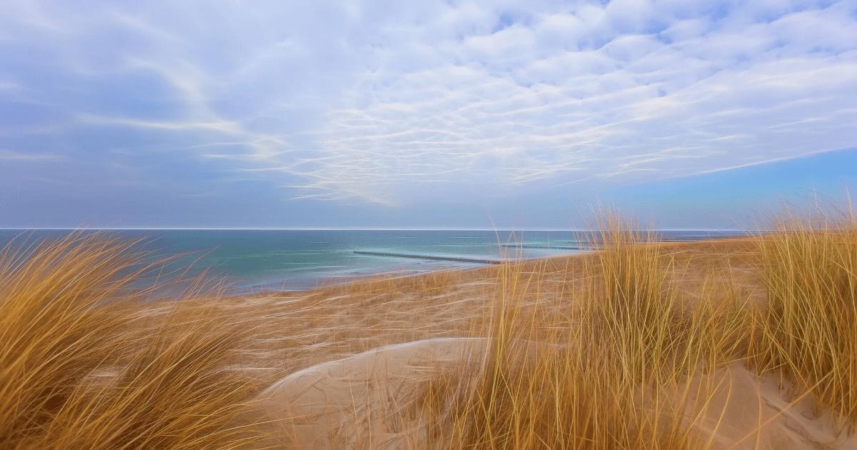 Sky,                Ecosystem,                Shore,                Sea,                Coast,                Grass,                Family,                Ecoregion,                Horizon,                Dune,                Backgrounds,                Photography,                Background,                 Free Image