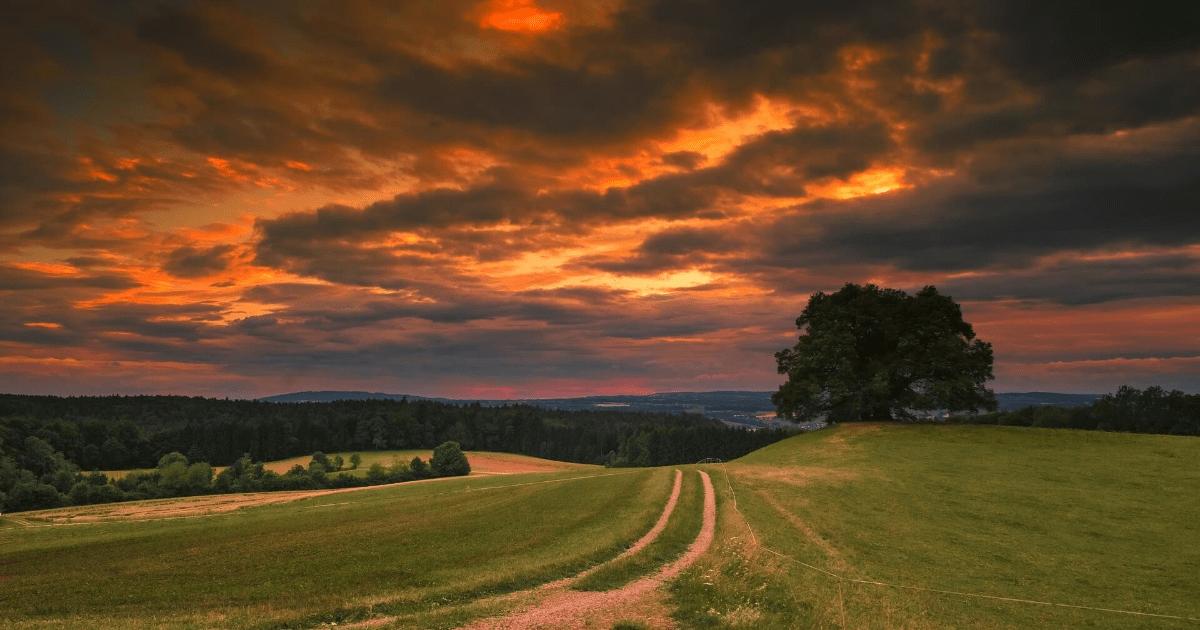 Sky,                Field,                Horizon,                Cloud,                Grassland,                Meadow,                Evening,                Rural,                Area,                Morning,                Plain,                Backgrounds,                Photography,                 Free Image