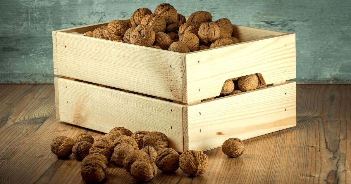 Walnut,                Tree,                Nuts,                Wood,                Nut,                Ingredient,                Produce,                Backgrounds,                Photography,                Background,                Photo,                White,                Black,                 Free Image