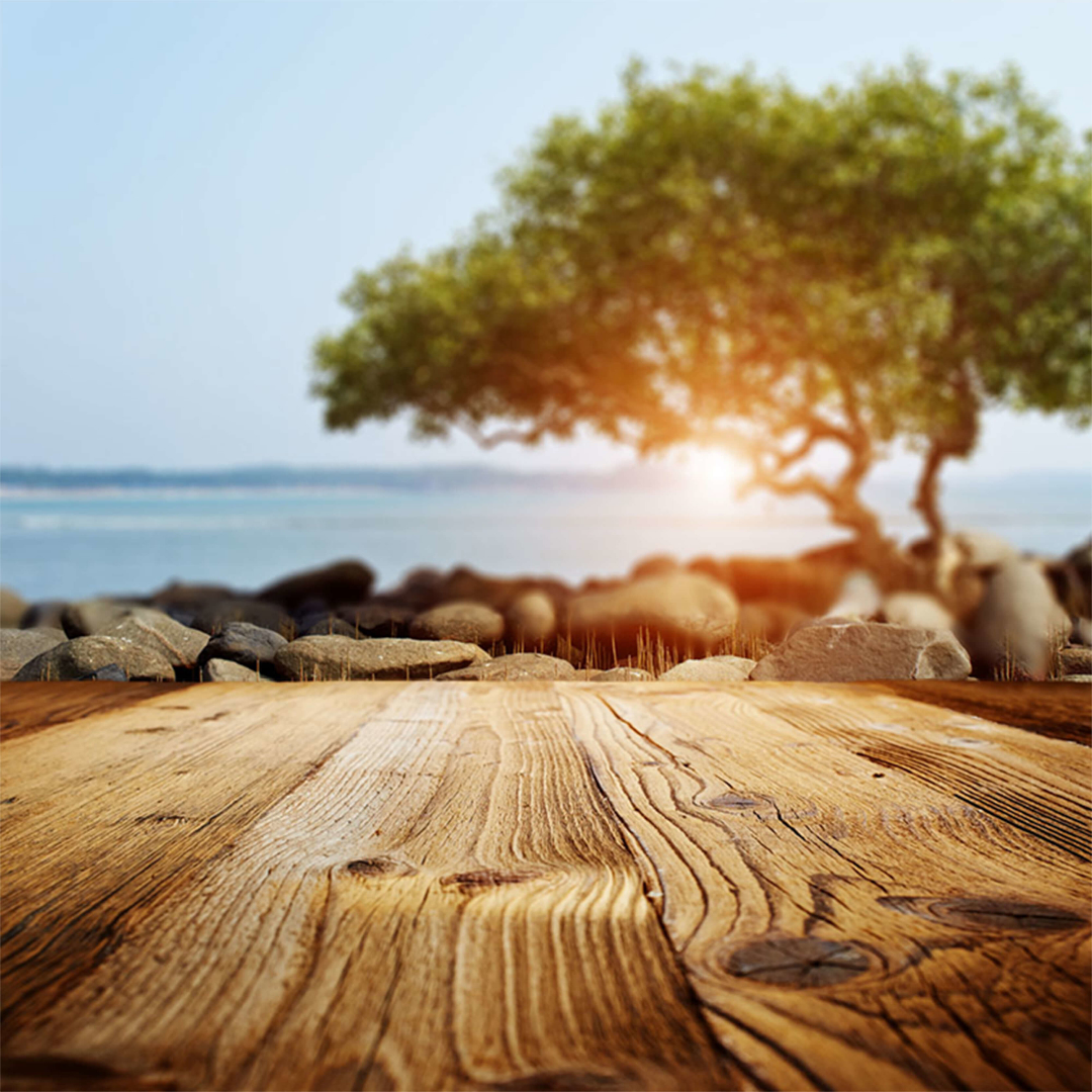 Wood,                Shore,                Tree,                Sky,                Grass,                Family,                Water,                Computer,                Wallpaper,                Backgrounds,                Photography,                Background,                Photo,                 Free Image