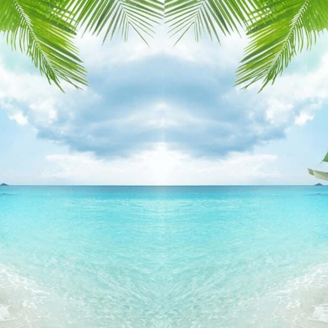 Sky,                Sea,                Tropics,                Caribbean,                Ocean,                Palm,                Tree,                Azure,                Aqua,                Vacation,                Shore,                Backgrounds,                Photography,                 Free Image