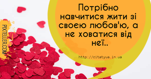 Text,                Yellow,                Font,                Flower,                Petal,                Love,                Funny,                Quote,                Poster,                Avatar,                White,                Red,                 Free Image