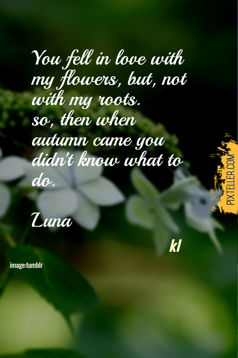 Green,                Flora,                Text,                Water,                Leaf,                Plant,                Morning,                Font,                Dew,                Moisture,                Poster,                Quote,                Black,                 Free Image