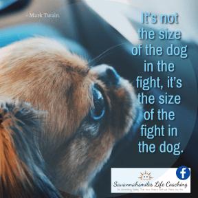 It's not the size of the dog in the fight, it's the size of the fight in the dog.