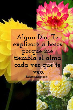 #collage #image #poemas #frases #quote #spanish
