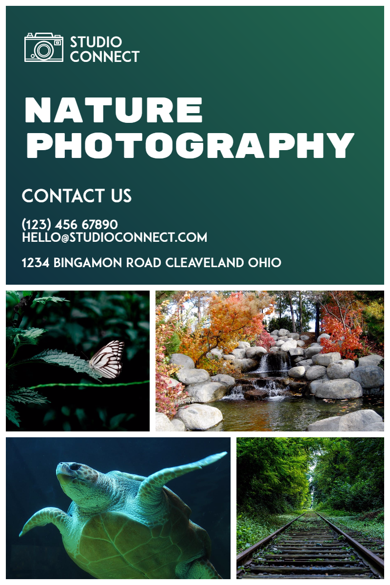 Photography Studio #studio #nature Design  Template
