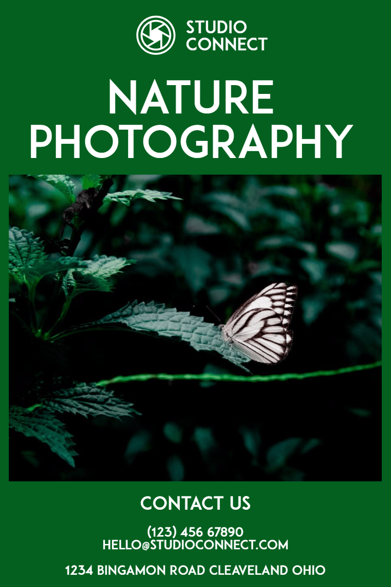 Moths,                And,                Butterflies,                Butterfly,                Flora,                Organism,                Advertising,                Pollinator,                Font,                Invertebrate,                Insect,                Studio,                Nature,                 Free Image
