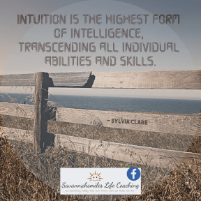 Intuition is the highest form of intelligence, transcending all individual abilities and skills.