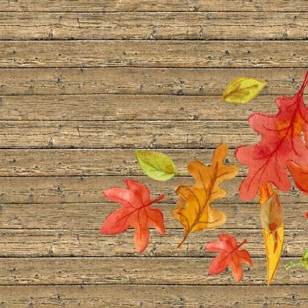 Leaf,                Maple,                Autumn,                Wood,                Tree,                Deciduous,                Backgrounds,                Business,                Background,                Image,                Yellow,                Red,                 Free Image