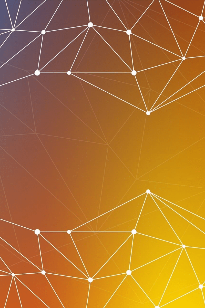 Spider,                Web,                Orange,                Yellow,                Structure,                Line,                Pattern,                Sky,                Symmetry,                Circle,                Computer,                Wallpaper,                Backgrounds,                 Free Image