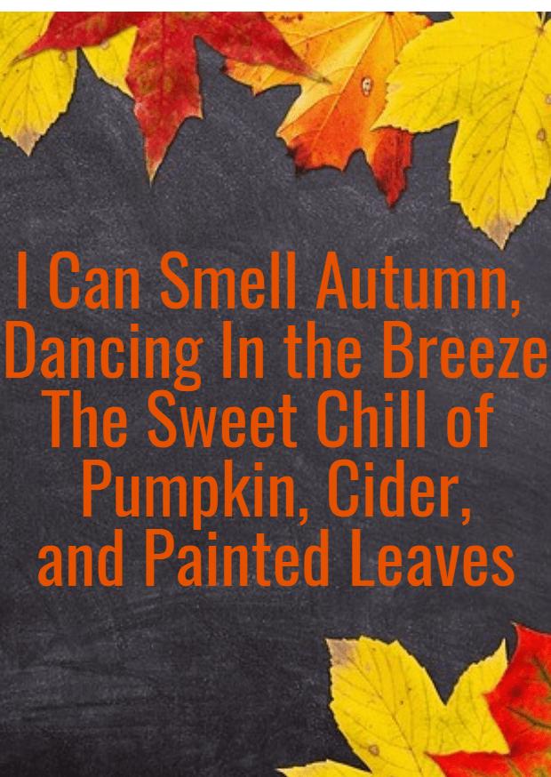 Leaf,                Yellow,                Text,                Autumn,                Font,                Petal,                Maple,                Tree,                PixTeller,                Black,                Red,                 Free Image