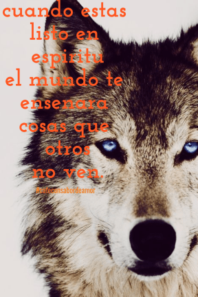 #collage #image #poemas #frases #quote #spanish