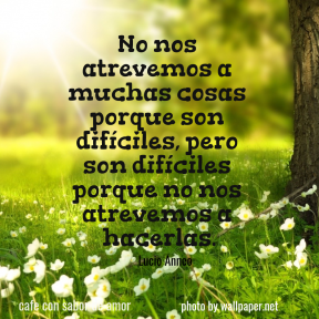 Frases,quotes,frase,reflexion