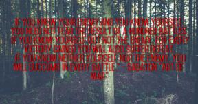 Sabaton Art of War
