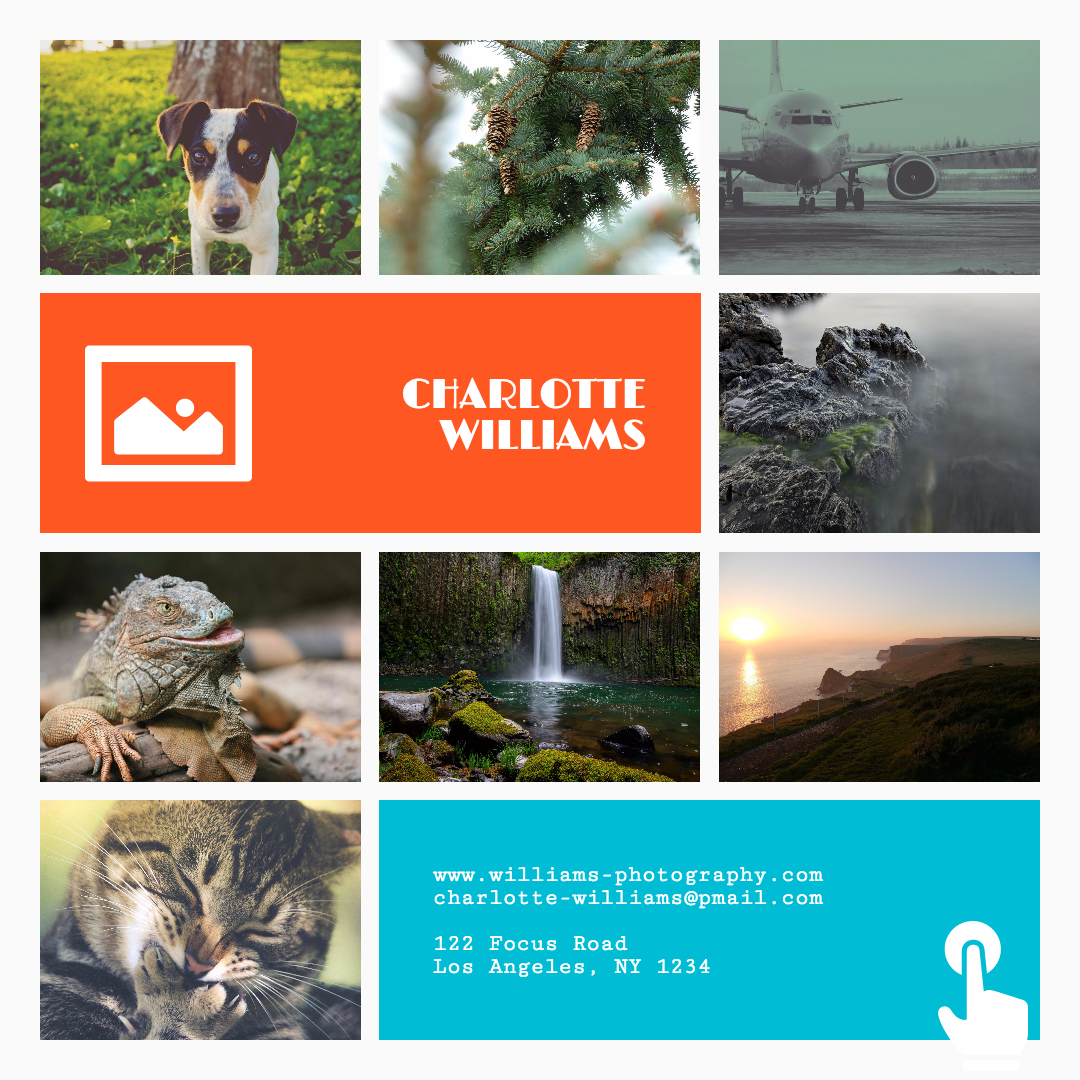 Ecosystem,                Fauna,                Water,                Resources,                Flora,                Tree,                Organism,                Advertising,                Brochure,                About,                Business,                Collage,                Calltoaction,                 Free Image