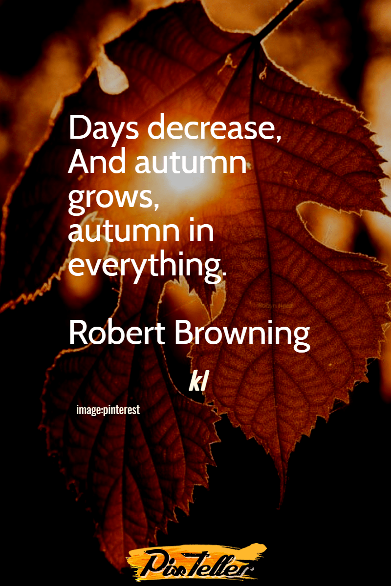 Leaf,                Text,                Font,                Organism,                Graphics,                Darkness,                Computer,                Wallpaper,                Autumn,                Black,                Red,                 Free Image