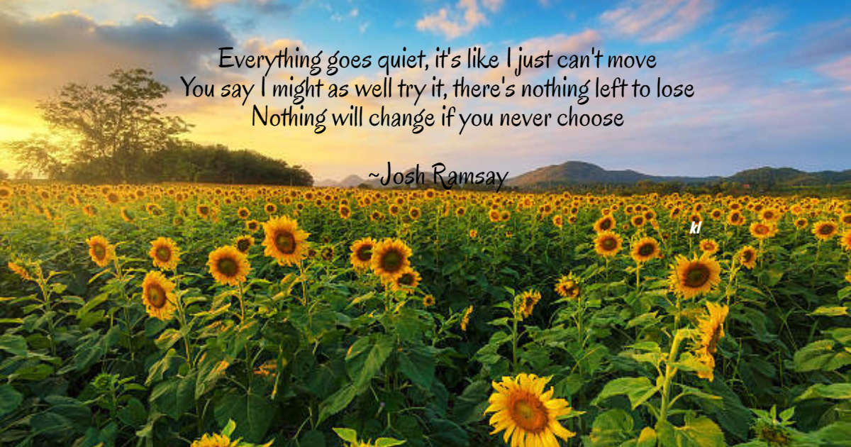 Sunflower,                Field,                Flower,                Morning,                Plant,                Sky,                Prairie,                Wildflower,                Seed,                Daisy,                Family,                Lifestyle,                Quote,                 Free Image