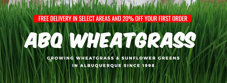 Green,                Grass,                Family,                Text,                Wheatgrass,                Plant,                Field,                Lawn,                Font,                Chrysopogon,                Zizanioides,                White,                Black,                 Free Image