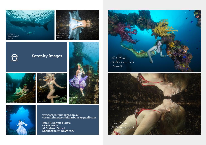 Underwater,                Organism,                Advertising,                Marine,                Biology,                Graphic,                Design,                Water,                Computer,                Wallpaper,                World,                About,                Business,                 Free Image