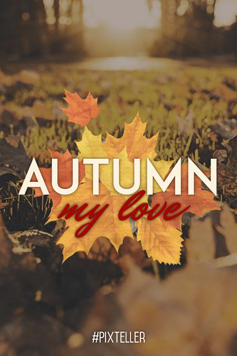 #autumn #quote #poster #fall  Design  Template