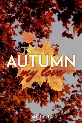#autumn #quote #poster #fall