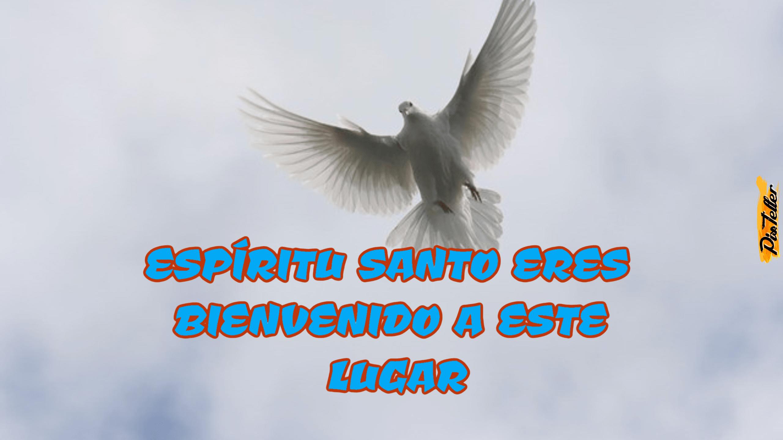 Sky,                Fauna,                Beak,                Bird,                Wing,                Feather,                Wildlife,                Computer,                Wallpaper,                Graphics,                Font,                White,                 Free Image