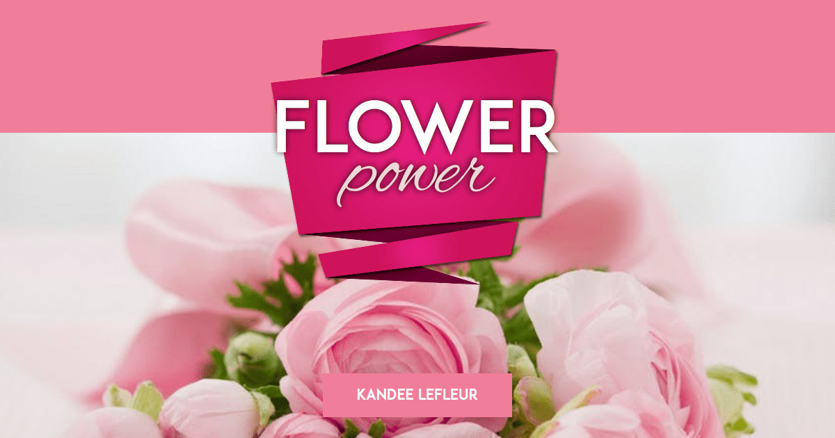 Flower,                Pink,                Rose,                Family,                Garden,                Roses,                Floristry,                Arranging,                Flowering,                Plant,                Petal,                Order,                Poster,                 Free Image