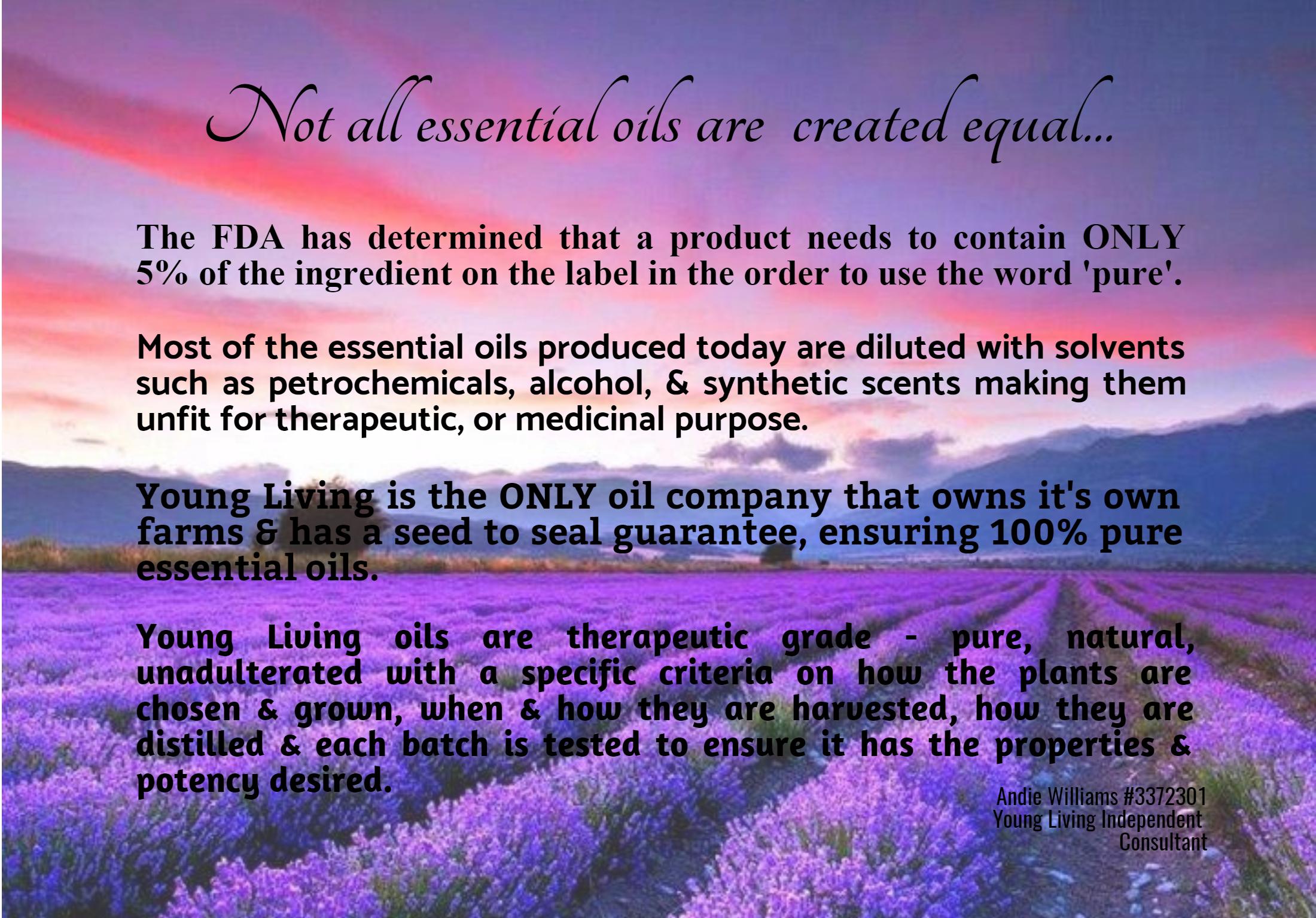 Lavender,                Flower,                Purple,                Text,                Sky,                Morning,                Violet,                English,                Phenomenon,                White,                Black,                Blue,                Fuchsia,                 Free Image