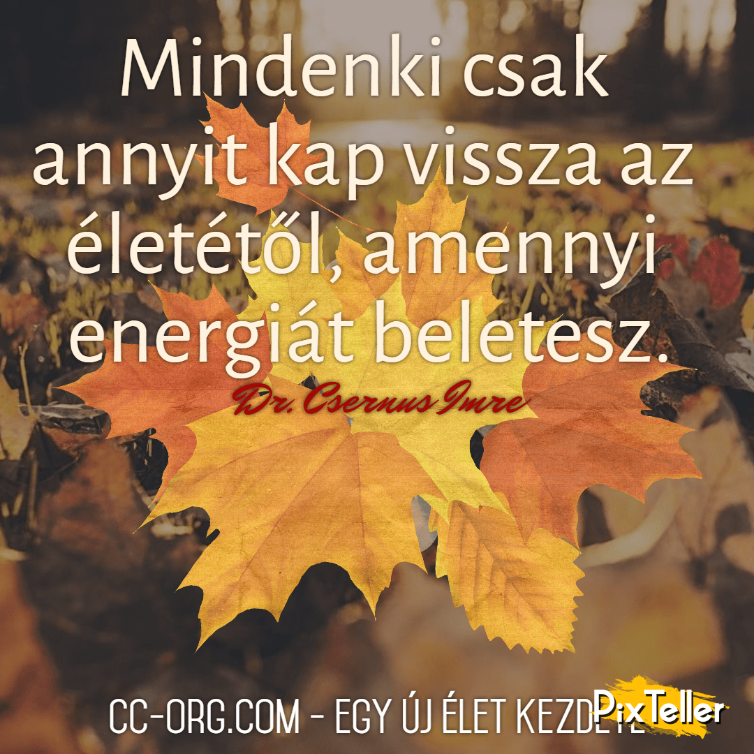 Autumn,                Quote,                Poster,                Fall,                White,                Black,                Yellow,                Red,                 Free Image