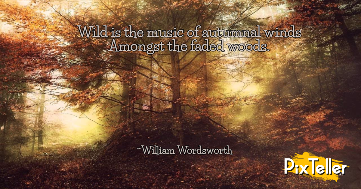 Wordsworth,                Autumnal,                Quote,                Black,                Yellow,                Red,                 Free Image