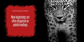 Mis silencios #luxury #quote #poster #avatar