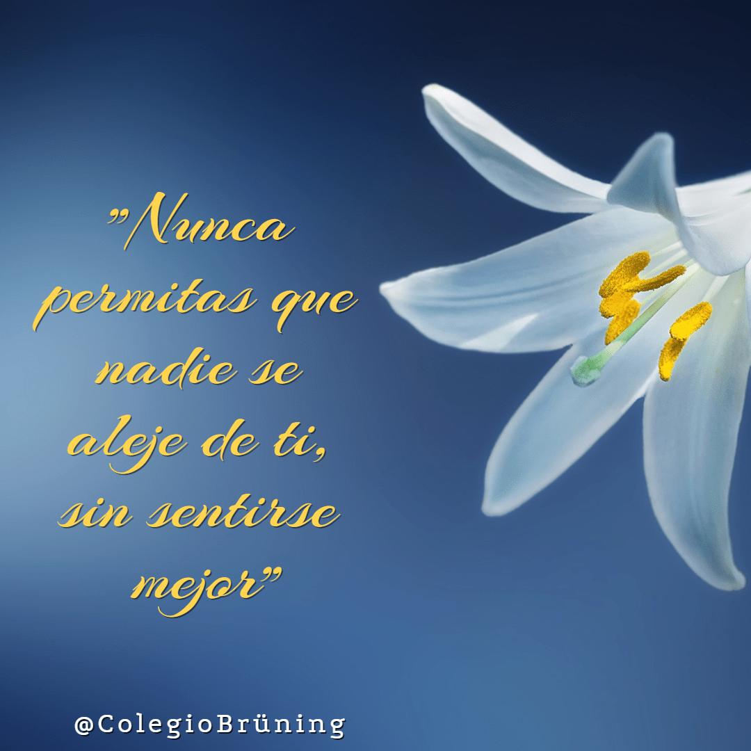 Love, Poster, Avatar, White, Black, Blue, Aqua,  Free Image