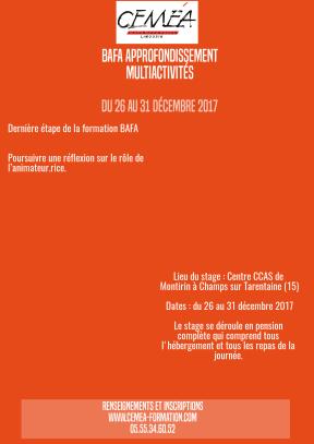 Affiche BAFA Multiacti 2017