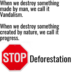 Stop Deforesation