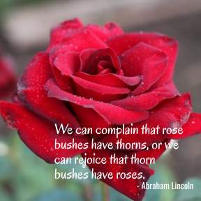 Abraham Lincoln Roses and Thorns Quote