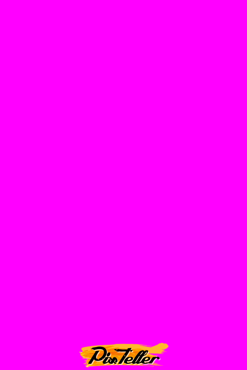 Fuchsia,                 Free Image