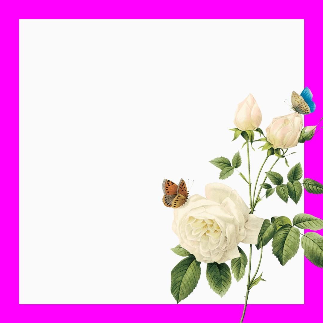 Anniversary,                Mother,                Love,                Mom,                White,                Fuchsia,                 Free Image