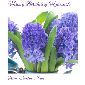 cousin Hyacinth