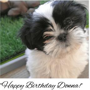 Happy Birtday Donna