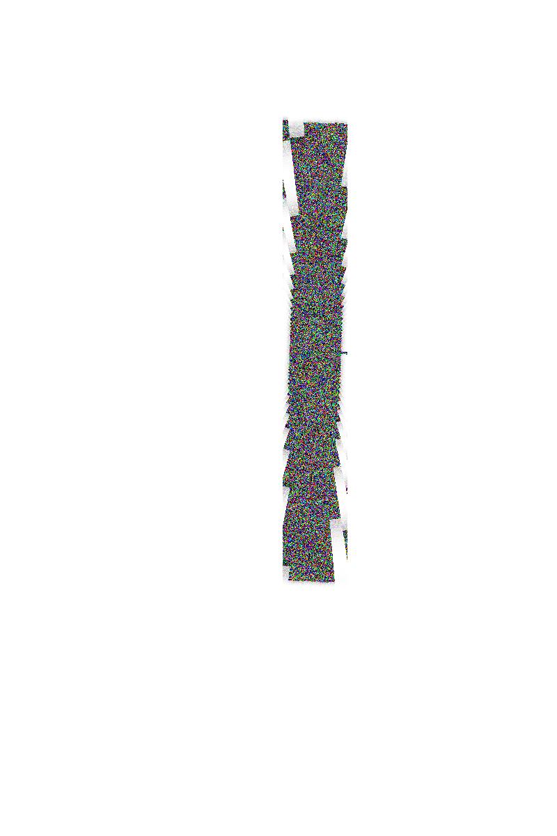 Collage,                Image,                White,                 Free Image