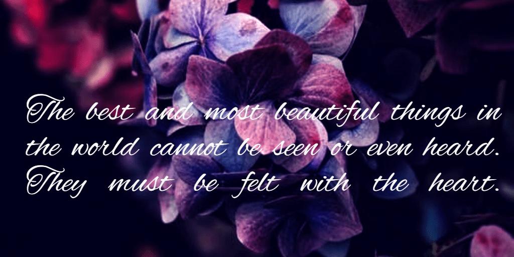 Purple,                Violet,                Text,                Love,                Flower,                Petal,                Font,                Magenta,                Friendship,                Rose,                Family,                Quote,                Simple,                 Free Image