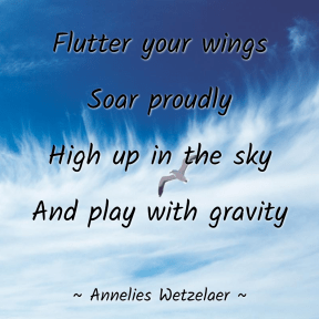 Flutter your wings