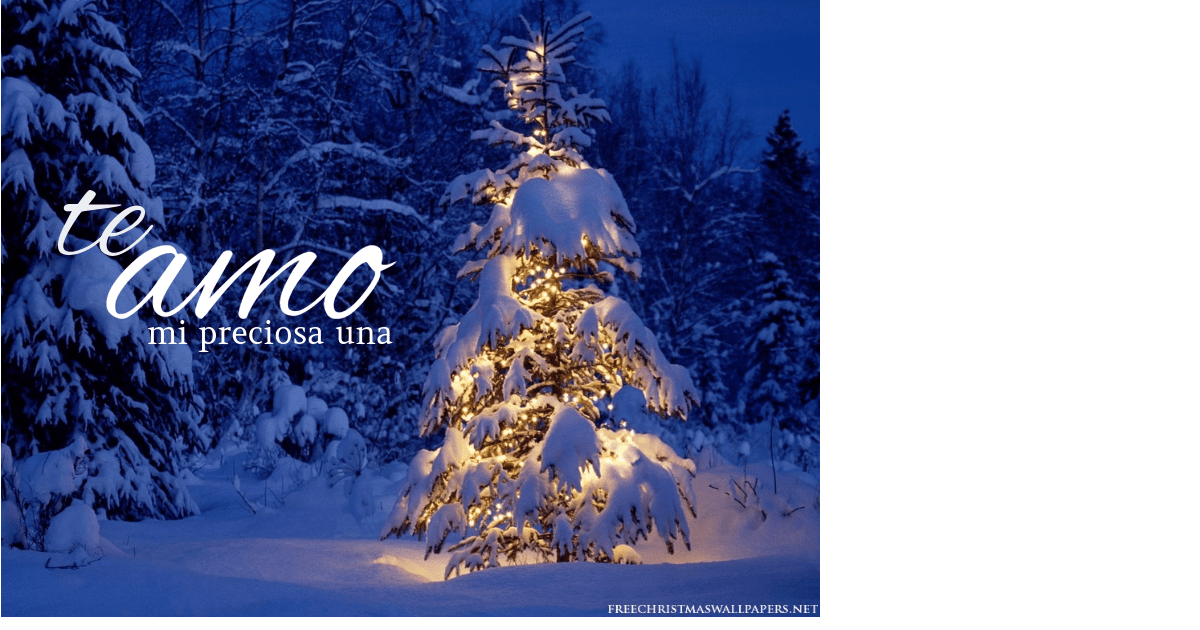 Winter,                Christmas,                Tree,                Fir,                Spruce,                Pine,                Family,                Conifer,                Snow,                Decoration,                White,                Black,                Blue,                 Free Image