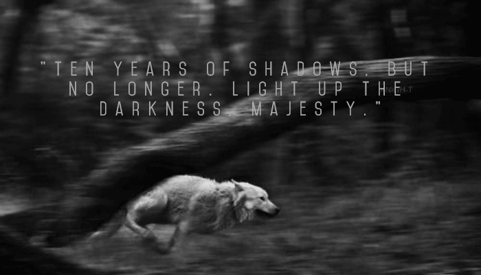 Black,                And,                White,                Photograph,                Nature,                Monochrome,                Photography,                Darkness,                Text,                Atmosphere,                Dog,                Like,                Mammal,                 Free Image