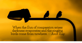 When the Sun of compassion arises darkness evaporates and the singing birds come from nowhere. -- Amit Ray #love #peace #compassion #quote