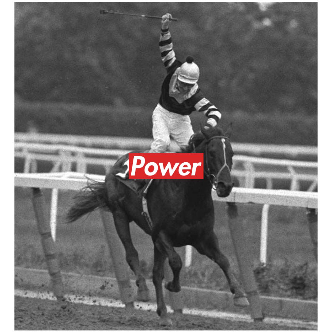 Horse,                Jockey,                Rein,                Animal,                Sports,                Like,                Mammal,                Stallion,                Racing,                Harness,                Trainer,                Black,                And,                 Free Image